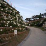 大石森公園 (3)