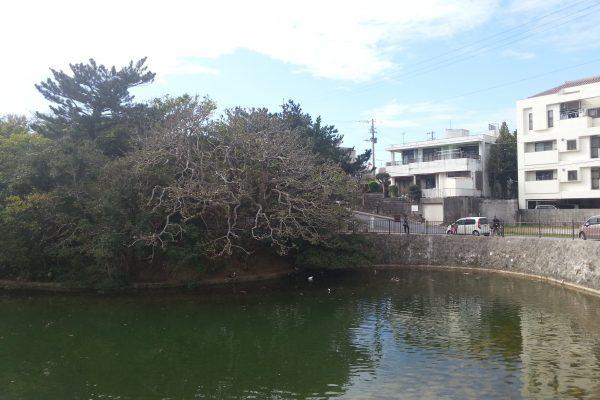 龍潭池 1